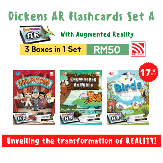 Dickens AR Flashcards Set (3 in 1)