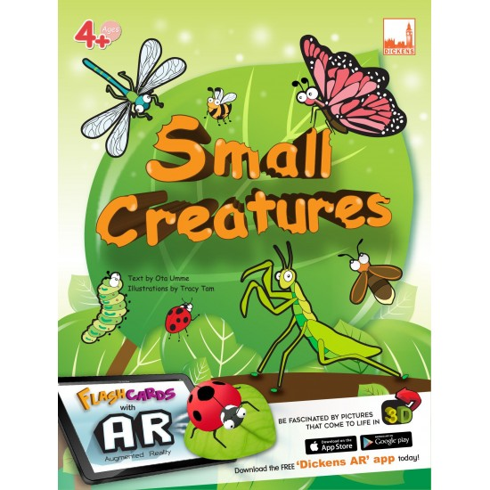 Flashcards - Small Creatures