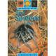 English Storybooks Set 4 (8 in 1)